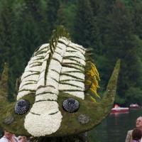 Trilobit Dreilapper