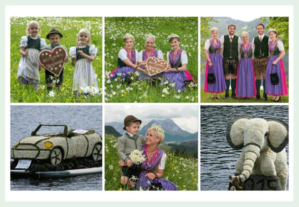 Fotos für Kataloge