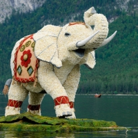 Bootskorso Indischer Elefant 1.Platz