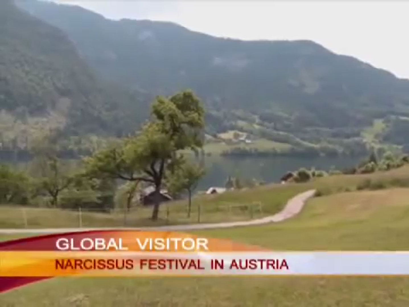 Chinese state Television visited Narzissenfest